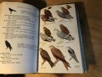 Peterson, RT & G Mountfort & Paul Géroudet - Guide des Oiseaux d'Europe