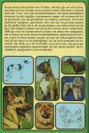 Trumbler  Eberhard   Tekeningen Franzi Fuchs   Omslag Letty Krijger Annokee - Duizend tips voor de Hondenvriend  Hond aanschaffen ?