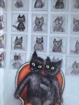Wilkon, Piotr en Wilkon, Jozef (ills.) - Rosalind het kattekind