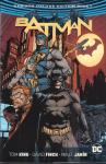 King, Tom / David Finch & Mikel Janin - Batman Rebirth Deluxe Edition Book 1, hardcover + stofomslag, gave staat (nieuwstaat)