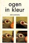 John lambrechts - Ogen in kleur, kwaliteiten van de duif