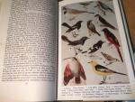 Bates & Lowther - Breeding Birds of Kahsmir