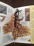 Jones, Frances - Nature's Deadly Creatures A Pop-Up Exploration