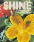 Haan, M. de / Holmes, B. / Mason, P. (ds 1255) - Shine / wensdroom en toekomstvisioen in de hedendaagse kunst
