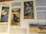 Scott, Peter - Wildlife in Danger - compleet met 50 plaatjes in kleur