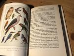 Mayr, Ernst & Francis Lee Jacques - Birds of the Southwest Pacific - A field guide to the birds of the area between Samoa, New Caledonia and Micronesia
