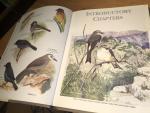 Ash, JS & Miskell, JE - Birds of Somalia