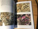 MacKenzie, WS & AE Adams - A Colour Atlas of Rocks and Minerals in Thin Section
