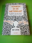 Bart Lutters - Vonken in de meterkast - de schokkende strijd tegen depressie, Parkinson en andere hersenziekten