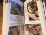 Fogden ea - A Photographic Guide to the Birds of Costa Rica