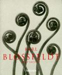 Sachsse Rolf - Karl Blossfeldt photographs 1865-1932