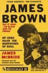 McBride, James - James Brown / op zoek naar de Godfather of Soul