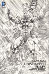 Morrison, Grant / Tony S. Daniel / Lee Garbett - Batman Unwrapped R.I.P., hardcover + stofomslag, gave staat (nieuwstaat)