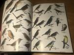 MacLean, GL & Roberts - Roberts' Birds of South Africa - 6th ed